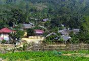 'Vương quốc' gà 9 cựa ở huyện nghèo nhất nước
