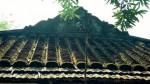 Nhà cổ trả triệu đô không bán của lão nông xứ Quảng