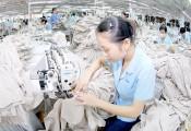 Vào TPP: Việt Nam yếu nhất, hưởng lợi nhiều nhất