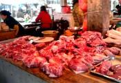 Hoảng sợ lợn được cho ăn đủ loại chất cấm