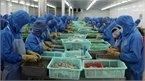 Xuất khẩu nông thủy sản: Kỷ lục 36 tỷ USD