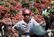Tổng thống Trump quyết định rút lui, thế mạnh Việt Nam gặp khó