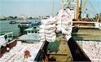 Gạo Việt đến thời