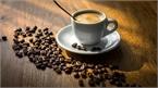 Giá cà phê hôm nay 31/8: Áp lựa mùa vụ ảnh hưởng giá cà phê