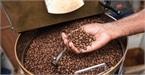 Giá cà phê hôm nay 20/9: Tăng 100 đồng, giao dịch trầm lắng