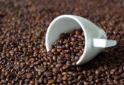 Giá cà phê hôm nay 10/10: Vượt mức 36.000 đồng/kg