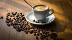 Giá cà phê hôm nay 2/10: Thị trường tiếp tục trầm lắng