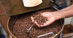 Giá cà phê hôm nay 26/10: Giao dịch trầm lắng